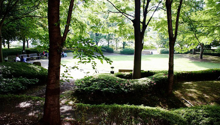 教室のまどから見える公園の景色は海外の語学学校に留学しているみたい