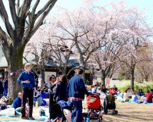 大阪城の西の丸庭園