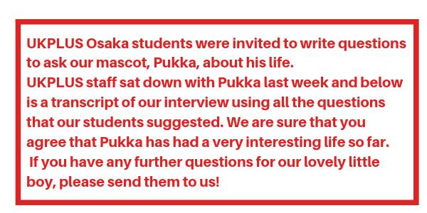 UKPLUS Osaka question マスコット Pukka