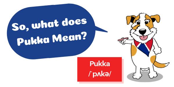 Pukkaってどういう意味?マスコット UKPLUS Osaka