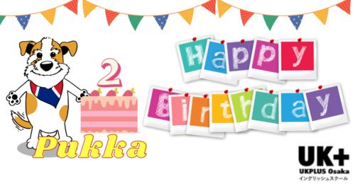 Pukka birthday キャラクター 犬 UKPLUS Osaka